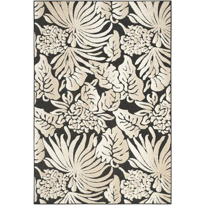Bahama Black Indoor/Outdoor Area Rug Rug Size: 53 x 77