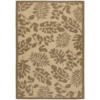 Paradise Creme / Brown Area Rug Rug Size: 53 x 77