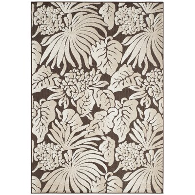 Patricia Brown Area Rug Rug Size: 53 x 77