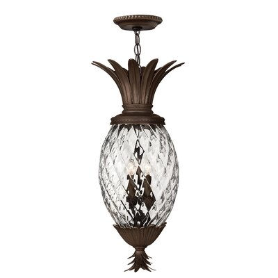 Ironwood 4-Light Outdoor Pendant
