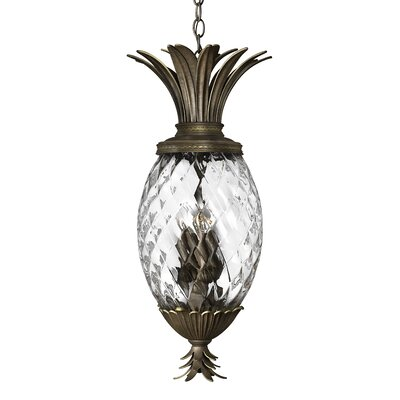 Ironwood 4-Light Outdoor Pendant Finish: Pearl Bronze