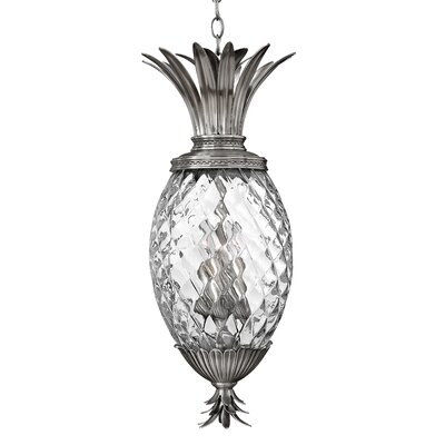 Ironwood 4-Light Outdoor Pendant Finish: Polished Antique Nickel