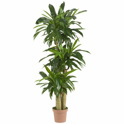 Corn Stalk Dracaena Silk Floor Plant in Pot