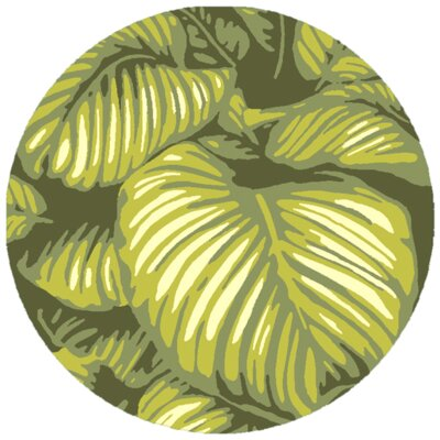 Passionflower Hand-Tufted Indoor/Outdoor Green Area Rug Rug Size: Round 8