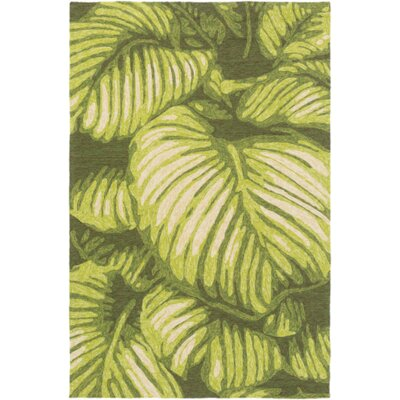 Passionflower Hand-Tufted Indoor/Outdoor Green Area Rug Rug Size: 5 x 8