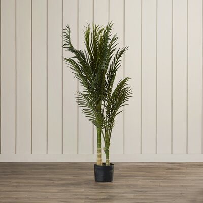 Golden Cane Palm Tree Floor Plant in Pot Size: 48 H x 40 W x 40 D