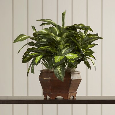 Golden Dieffenbachia Silk Desktop Plant in Planter