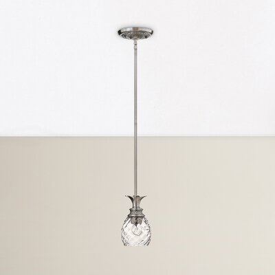 Terry 1-Light Mini Pendant Finish: Polished Antique Nickel