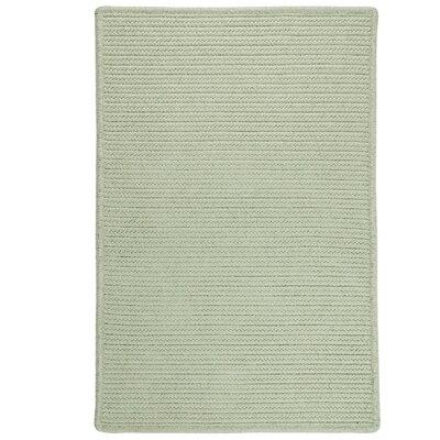 Isla Hand-Woven Green Area Rug Rug Size: 8 x 10