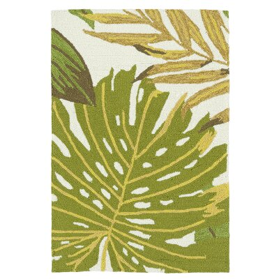 Brianna Handmade Green/White Indoor/Outdoor Area Rug Rug Size: Rectangle 2 x 3