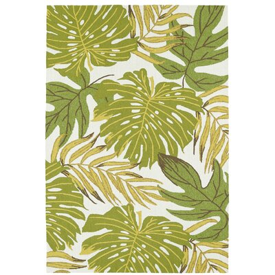 Kioneli Handmade Green/White Indoor/Outdoor Area Rug Rug Size: 76 x 9