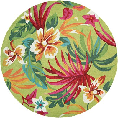 Amberjack Painted Hand-Woven Fern/Red Indoor/Outdoor Area Rug Rug Size: Round 710