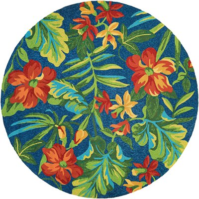 Amberjack Tropical Orchid Azure/Forest Hand-Woven Green/Blue Indoor/Outdoor Area Rug Rug Size: 36 x 66