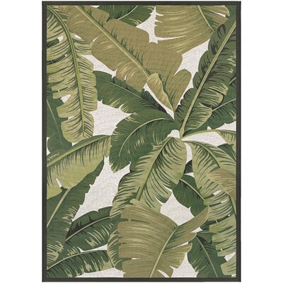 Bay Isle Home Boundary Palm Lily Hunter Green/Ivory Indoor/Outdoor Area Rug