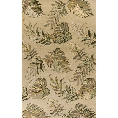 Antigua Hand-Tufted Sand Area Rug Rug Size: 5 x 8