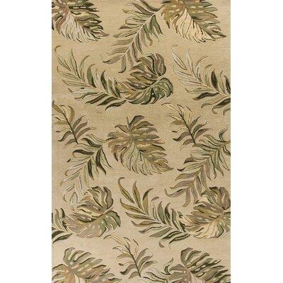 Antigua Hand-Tufted Sand Area Rug Rug Size: 33 x 53