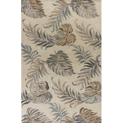 Antigua Hand-Tufted Ivory Area Rug Rug Size: 5 x 8