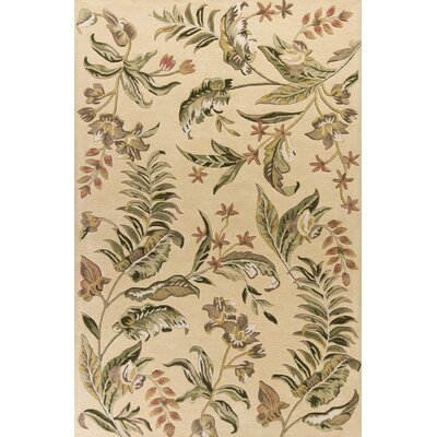 Antigua Hand-Tufted Cream Area Rug Rug Size: 33 x 53