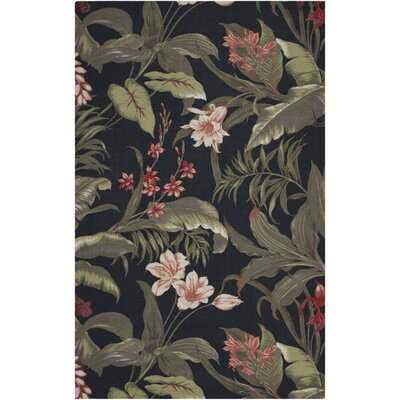 Acheritou Black Indoor/Outdoor Area Rug Rug Size: 4'4 x 6'11
