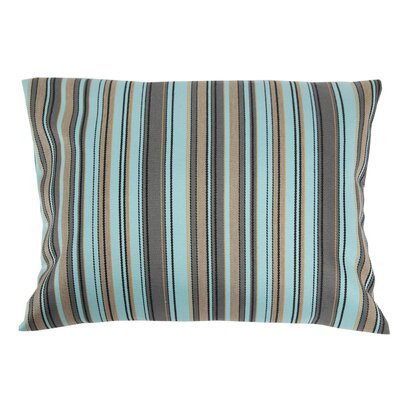 Adriano Sunbrella Throw Pillow Color: Aqua
