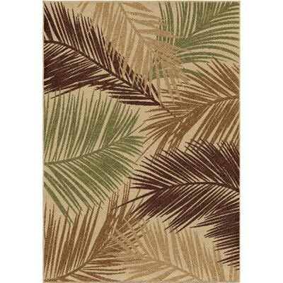 Nichole Indoor/Outdoor Area Rug Rug Size: Rectangle 52 x 76