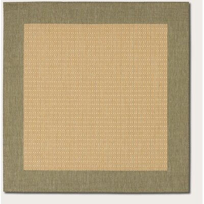 Southard Checkered Field Natural Indoor/Outdoor Area Rug