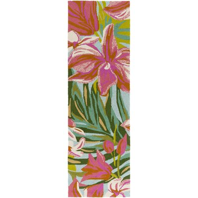 Shelly Bay Hand Woven Pink/Green Indoor/Outdoor Area Rug Rug Size: Runner 26 x 8