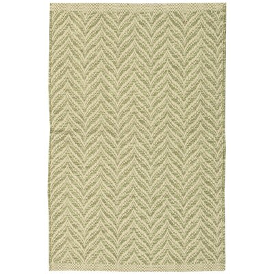 Antigua Light Green/Beige Area Rug Rug Size: 2'6 x 4'