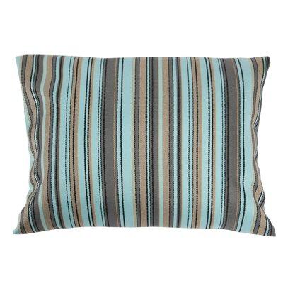 Trinidad Sunbrella Lumbar Pillow Color: Aqua