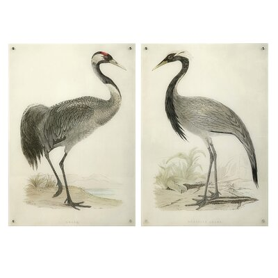 Regal Birds Floating Acrylic 2 Piece Painting Print Set