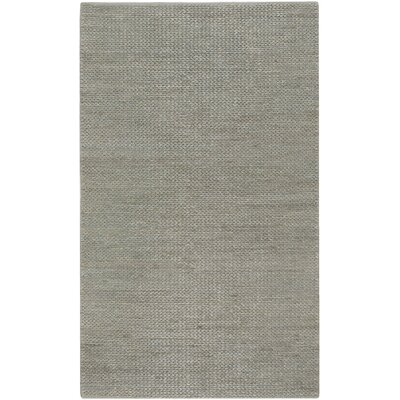 Tai Hand Woven Gray Area Rug Rug Size: Rectangle 2 x 3