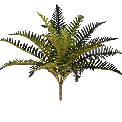 Fern Bush (Set of 2)