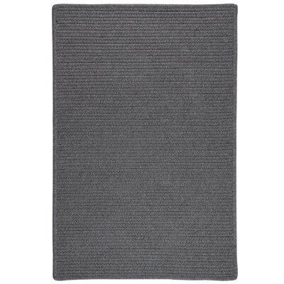 Hopseed Hand-Woven Gray Indoor/Outdoor Area Rug Rug Size: 6' x 9'