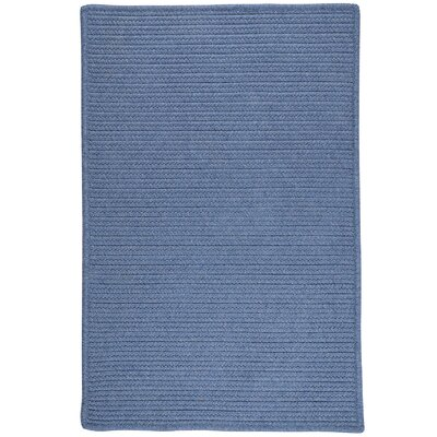 Hopseed Hand-Woven Blue Indoor/Outdoor Area Rug Rug Size: 8 x 10