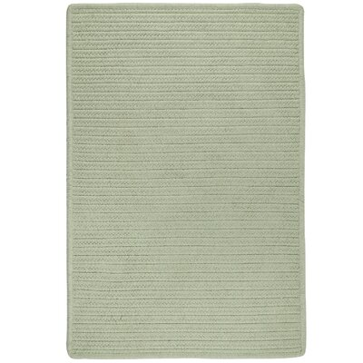 Hopseed Hand-Woven Sage Indoor/Outdoor Area Rug Rug Size: 9 x 12