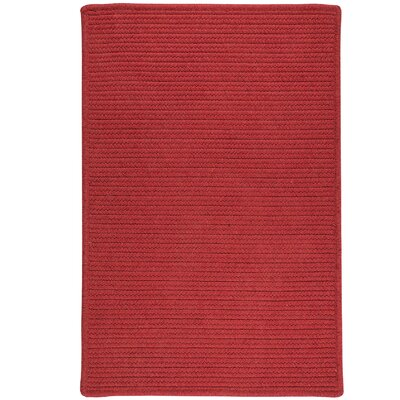 Hopseed Hand-Woven Red Indoor/Outdoor Area Rug Rug Size: Runner 2 x 7
