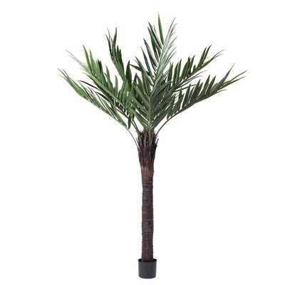 UV Kentia Palm Tree