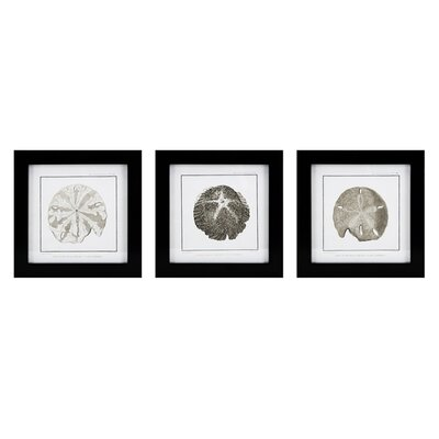 3 Piece Framed Graphic Art Set