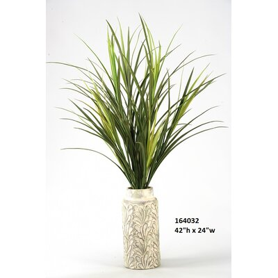 Tall Mango Grass Floor Plant in Planter