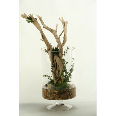 Ghostwood Branches Desk Top Plant in Decorative Vase
