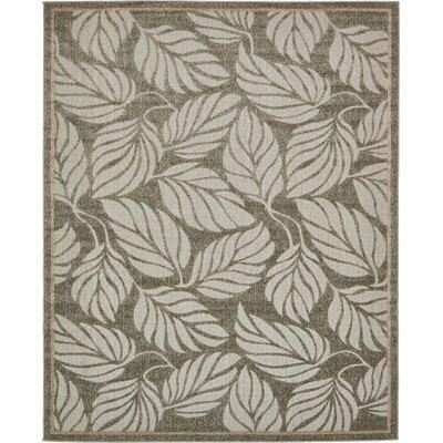 Barton Olive Indoor/Outdoor Area Rug Rug Size: 8 x 10