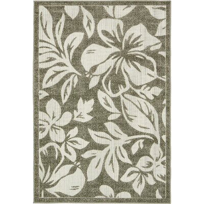 Canton Brown Indoor/Outdoor Area Rug Rug Size: 4' x 6'
