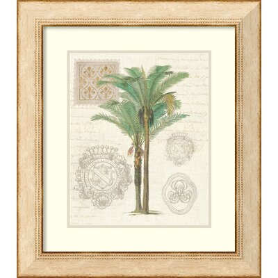 Vintage Palm Study II Framed Painting Print