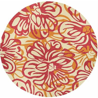 Wallingford Hibiscus Hand-Woven Rosebud/Honey Indoor/Outdoor Area Rug Rug Size: Round 710
