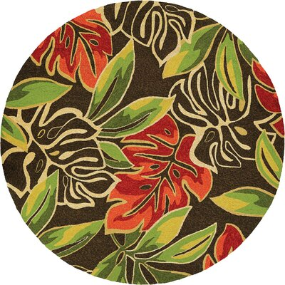 Mariann Areca Palms Hand-Woven Dark Brown/Green Indoor/Outdoor Area Rug Rug Size: Rectangle 36 x 56