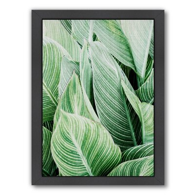 Tropical Leaves Framed Photographic Print Size: 11 H x 9 W x 1 D