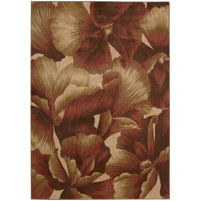 Hudson Brown/Tan Area Rug Rug Size: 56 x 75