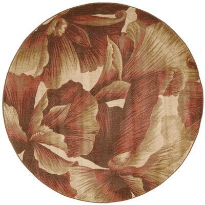 Hudson Brown/Tan Area Rug Rug Size: Round 56