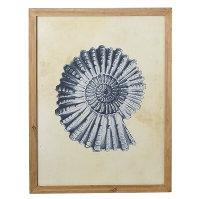 Nautilus Shell Framed Wall Art