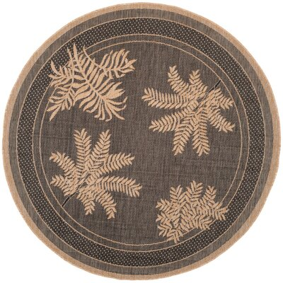 Curley Black/Natural Indoor/Outdoor Area Rug